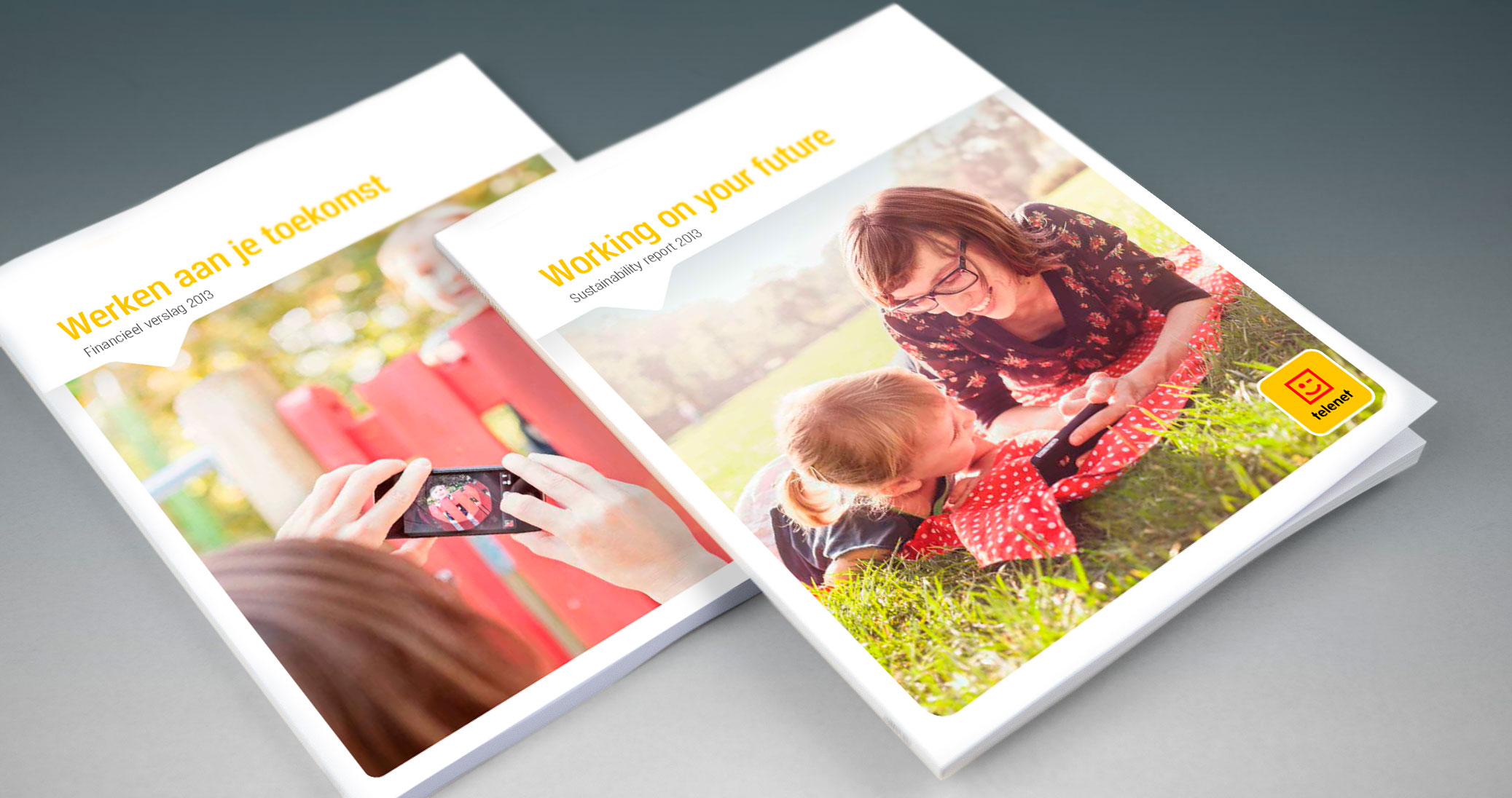 Telenet Annual Report 2013