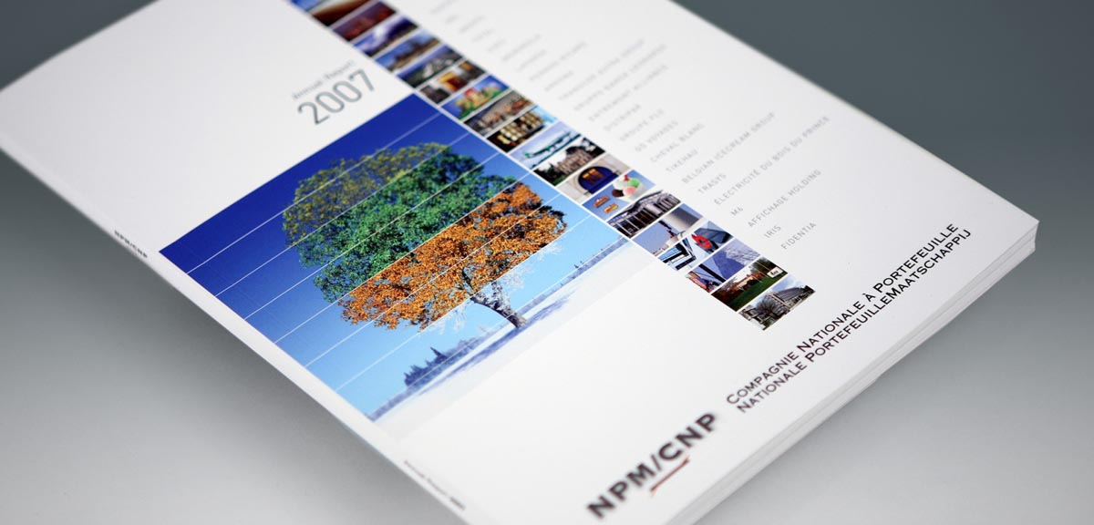 CNP - Annual Report 2007