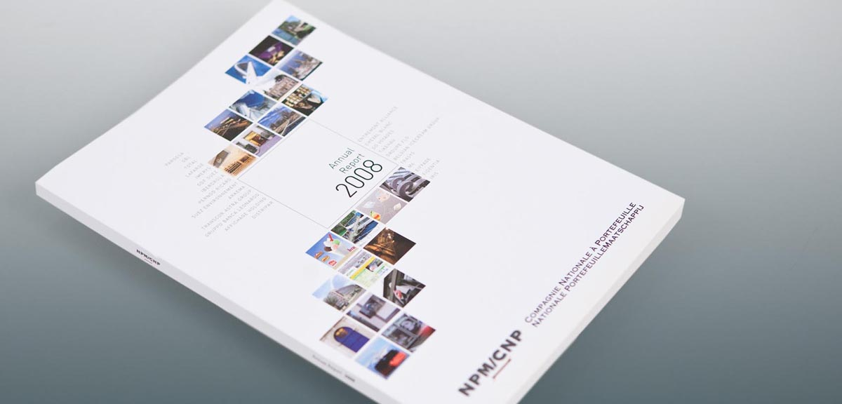CNP - Annual Report 2008