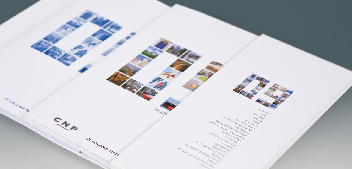 CNP - Annual Report 2009