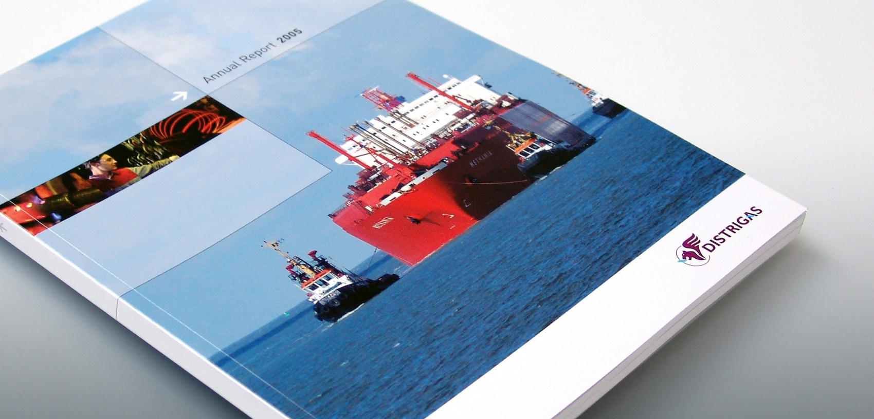 Distrigas - Annual Report 2005