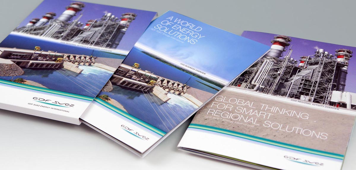 GDF SUEZ - Annual Report 2008