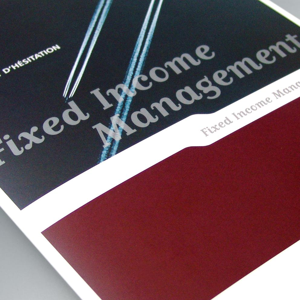Dexia - Fixed Income Management brochure